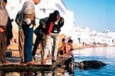 travel-photography-india-6-jpg