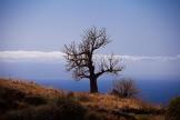 travel-photography-cape-verde-173